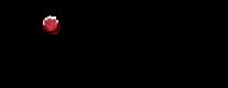Réalisation du site internet digaméSi
